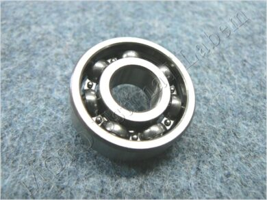 Bearing 6305 C3(850032)