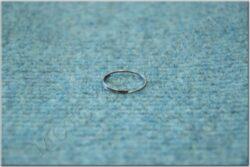 key ring (UNI)