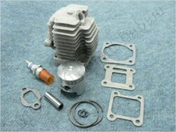 Cylinder assy. 40,00, pin 10,00 ( Mini Bike )