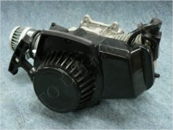 Engine cpl. ( Mini Bike ) cover - plastic