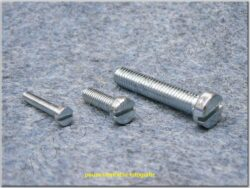 Bolt slotted cheese head M6x85 DIN 84