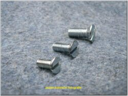 Bolt slotted cheese M4x6 - cylindrical cross head
